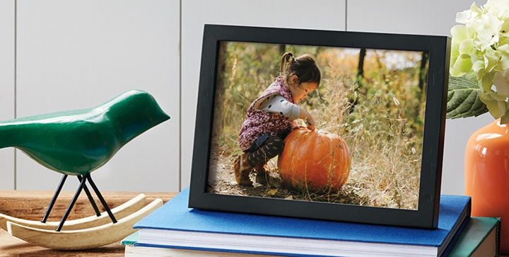 10 Tips for Taking Better Pumpkin Patch Photos