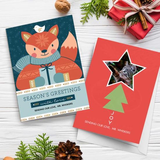 Creative ideas for pet christmas card photos